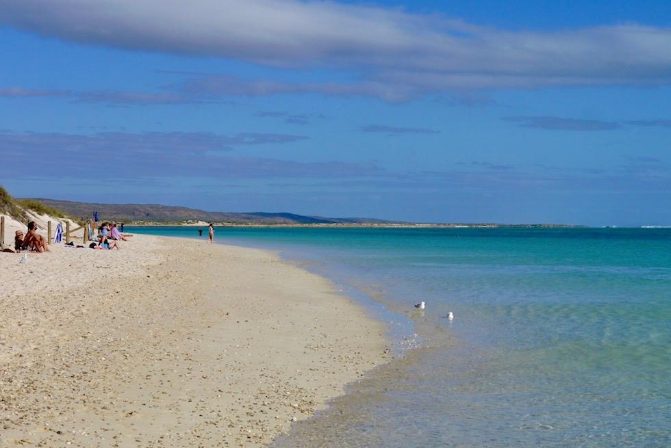 Ideal zum Sonnen & Drift Schnorcheln ist die Turquoise Bay - Cape Range National Park - Western Australia