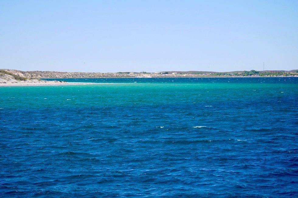 Einer der schönsten Coral Bay Schnorchel Spots: Skeleton Bay - Ningaloo Reef - Western Australia