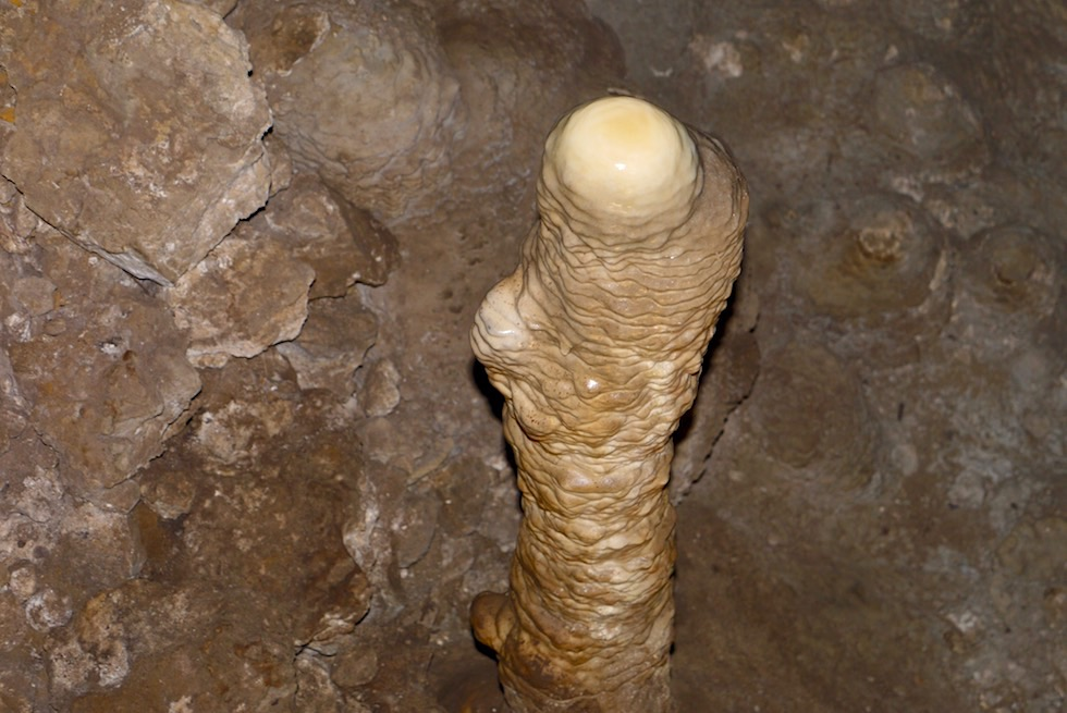 Stalagmit - Mammoth Cave - Margaret River Caves - Western Australia
