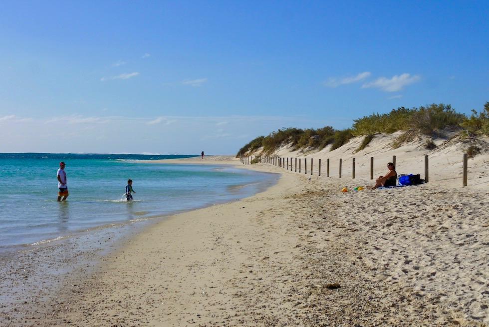 Sonnenbaden & Strömungs-Schnorcheln - Turquoise Bay - Cape Range National Park bei Exmouth - Western Australia
