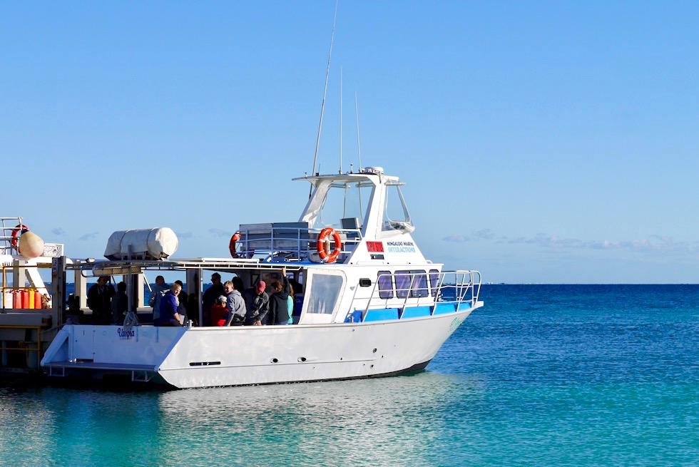 Schnorcheln mit Mantas - Utopia Coastal Adventure Tours - Coral Bay - Western Australia
