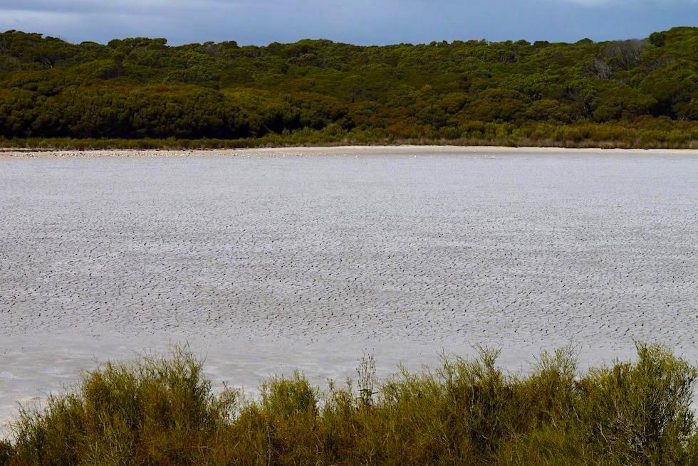 Ausgetrocknete Woolley Lake - Beachport - South Australia