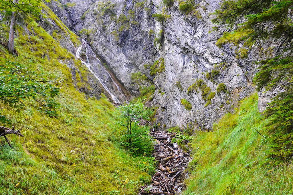 Abstieg Gufferthütte & Halserspitze - kleine Wasserfälle am Wegesrand - Blauberge Wanderung - Bayern