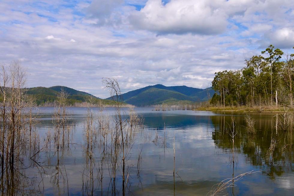 Spiegelungen: Numinbah Valley & Advancetown Lake im grünen Hinterland der Gold Coast - Queensland