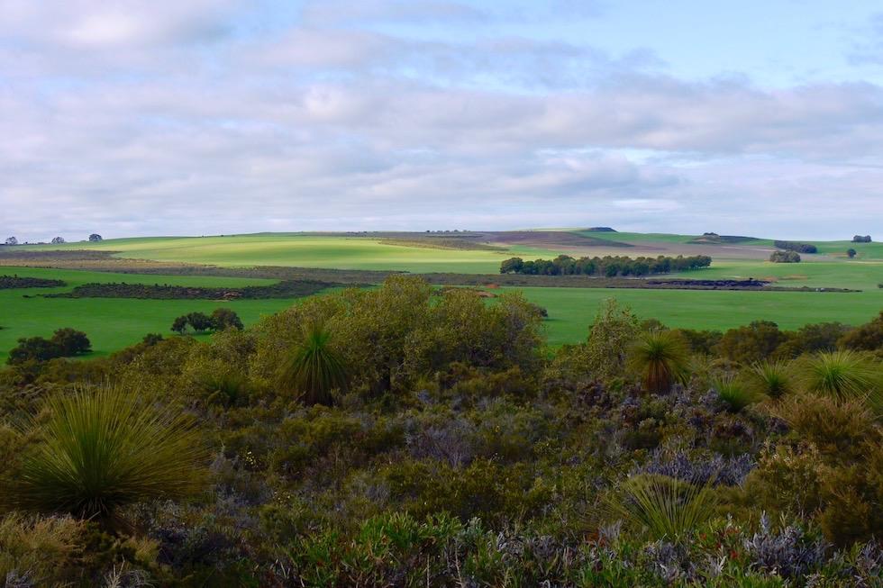 Ausblick auf die Lateritebene & Koomba Chiler Plateau im Lesueur National Park - Western Australia