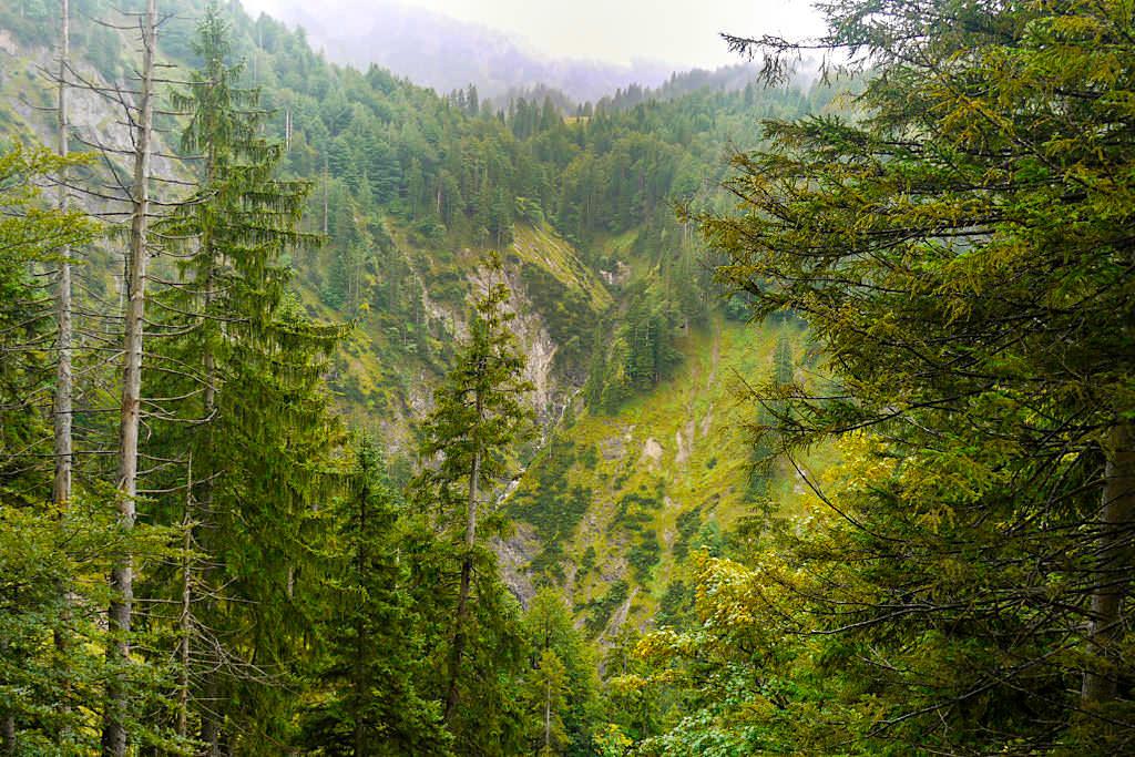 Bergblick & kleine Wasserfälle auf der Blauberge-Wanderung - Wildbad Kreuth, Bayern