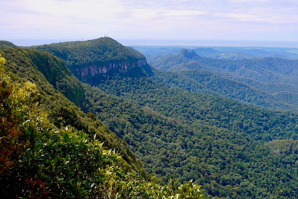 Ausblick auf die Grenze zwischen Queensland & New South Wales - Best of all Lookout - Spring Brook Plateau & Springbrook National Park - Queensland
