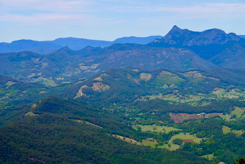 Blick auf Mt Warning - Best of all Lookout - Springbrook Plateau im Springbrook National Park - Queensland