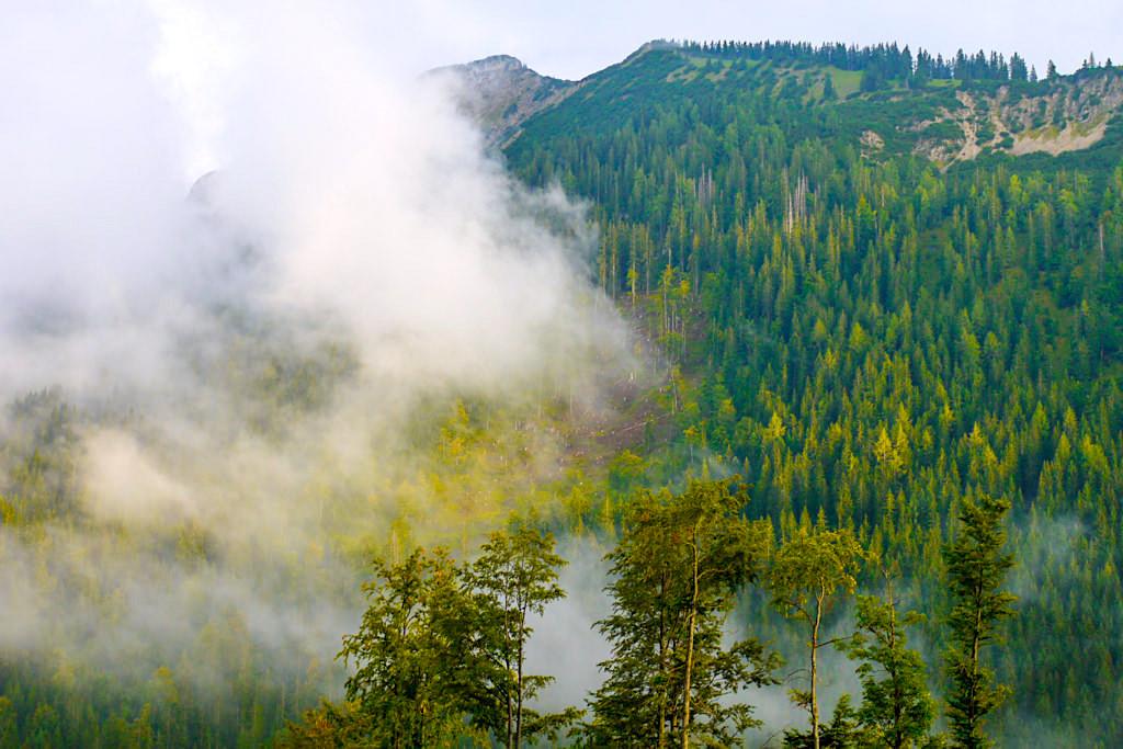 Blaubergkamm bei mystischer Sonne-Wolken-Nebel-Stimmung - Blauberge Wanderung zur Gufferthütte - Bayern
