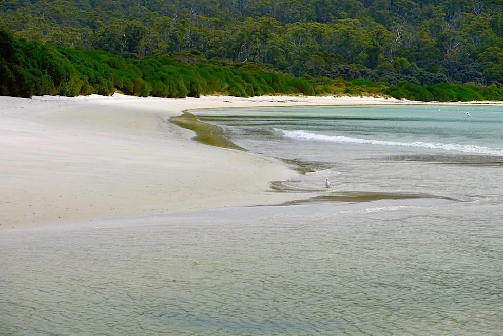 Wunderschönes Cockle Creek Inlet & Strand am südlichen Ende Australiens - Tasmania
