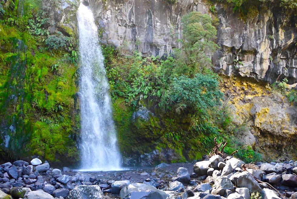 Dawson Falls - Egmont National Park - Nordinsel Neuseeland