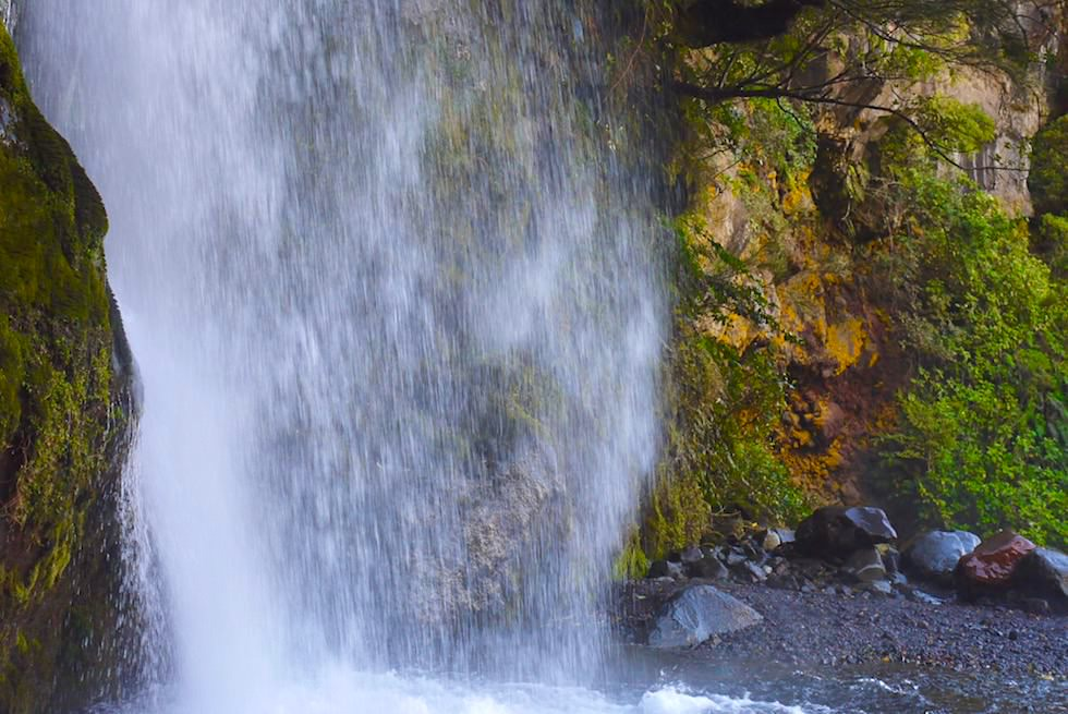 Dawson Falls & der Wasserfall-Bauch - Egmont National Park - Nordinsel Neuseeland