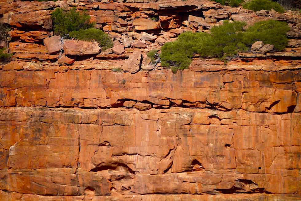 Verschiedene Gesteinsschichten der Murchison Gorge - Kalbarri National Park - Western Austalia