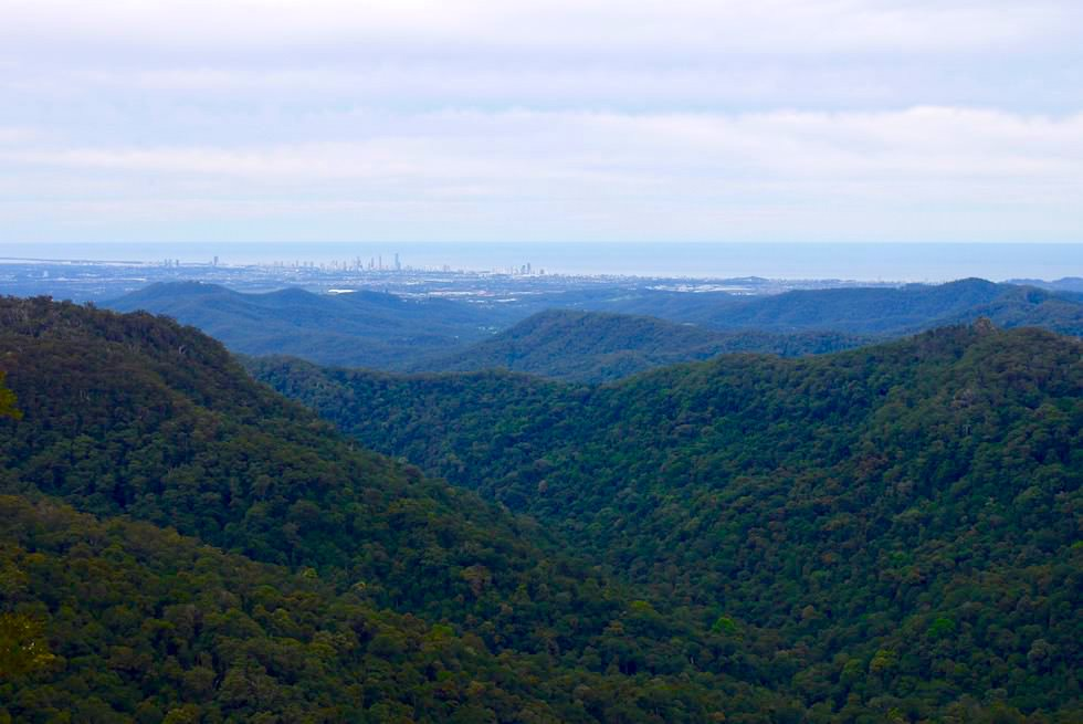 Blick auf die Gold Coast vom Canyon Lookout - Springbrook National Park - Queensland