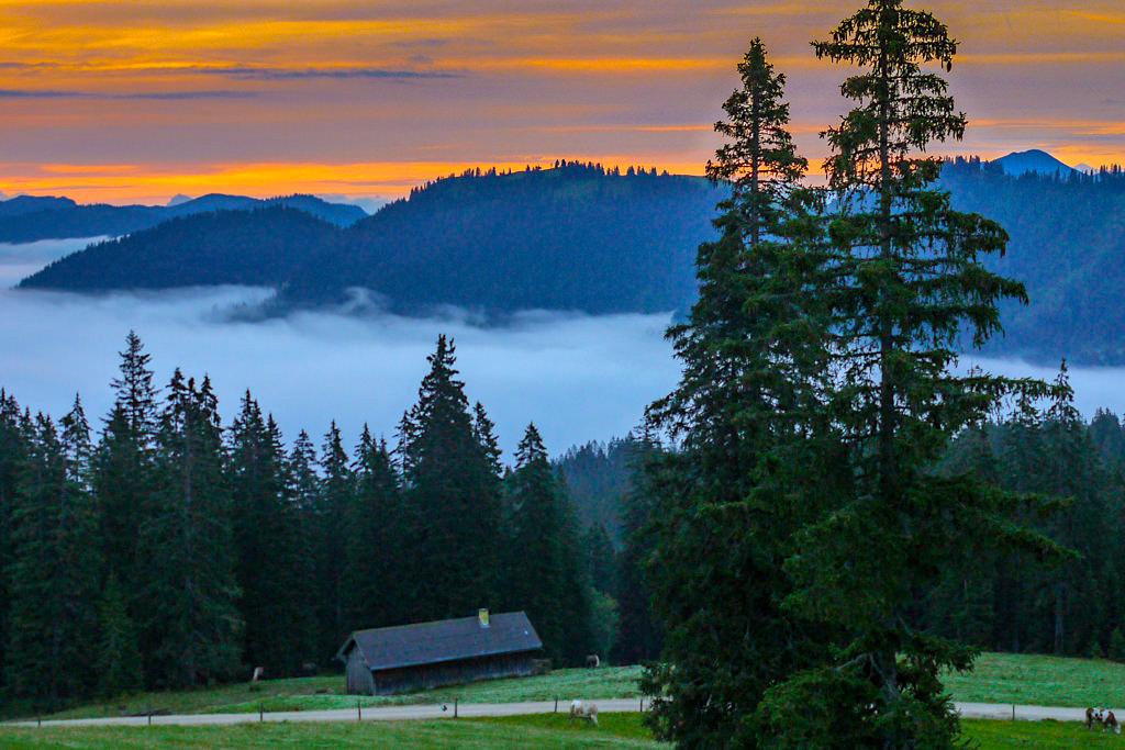 Gufferthütte - Feuriger Sonnenaufgang & Nebel im Tal - Blauberge Wanderung - Wildbad Kreuth, Bayern