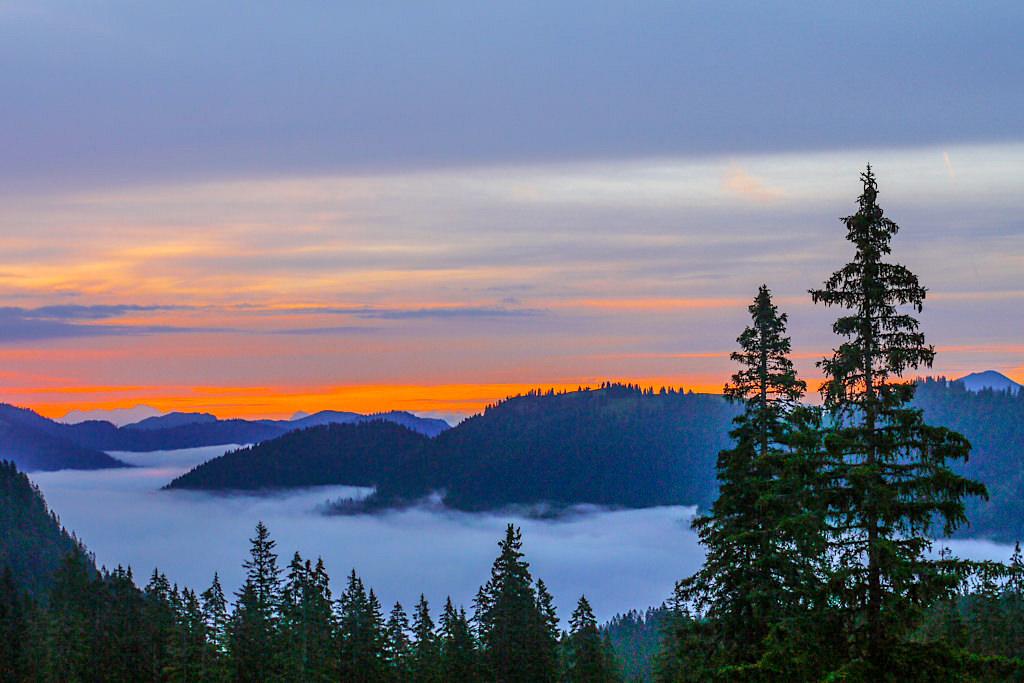 Gufferthütte - Atemberaubend feuriger Sonnenaufgang über einem Nebelmeer - Blauberge Wanderung - Wildbad Kreuth,Bayern