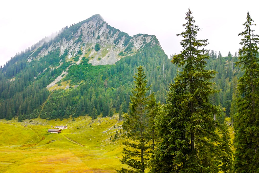 Gufferthütte - Abstieg über Halserspitze & Windalm - Blauberge Wanderung - Bayern
