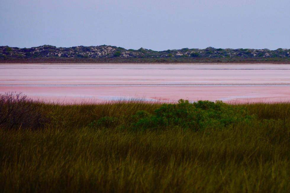 Hutt Lagoon oder auch als Pink Lake bekannt - Western Australia
