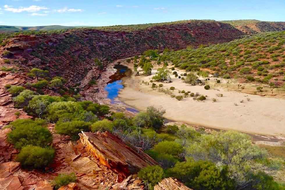 Kalbarri National Park - Phänomenaler Ausblick auf die wilde Murchison Gorge, Murchison River, Sandbänke & Hochebene - Western Australia
