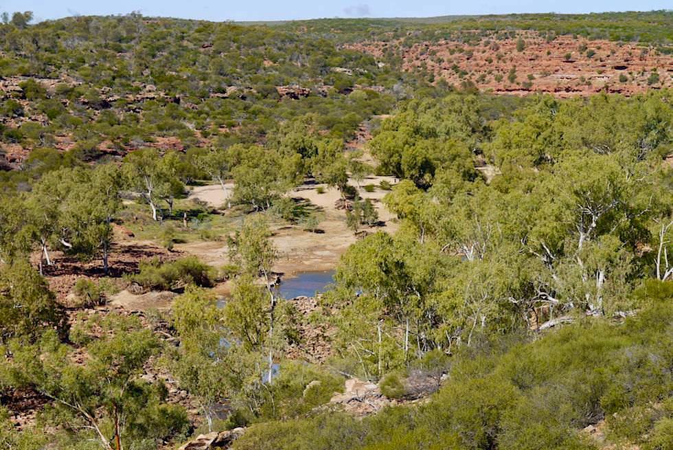 Kalbarri National Park - Ausblick auf Murchison River vom Ross Graham Lookout - Western Australia