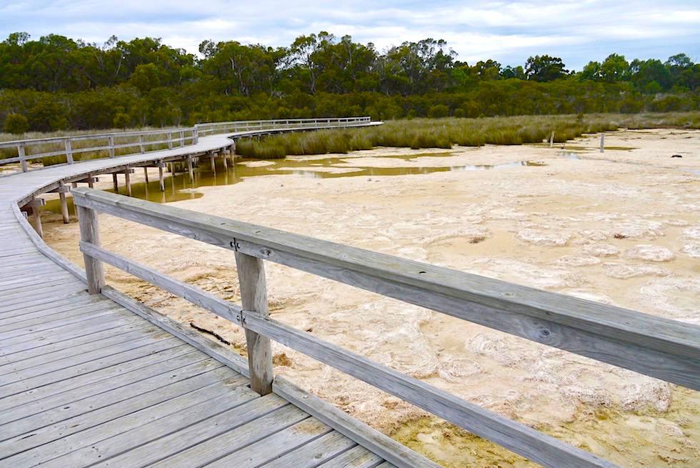 Lake Clifton - Boardwalk zu den einzigartigen Thromboliten - Western Australia