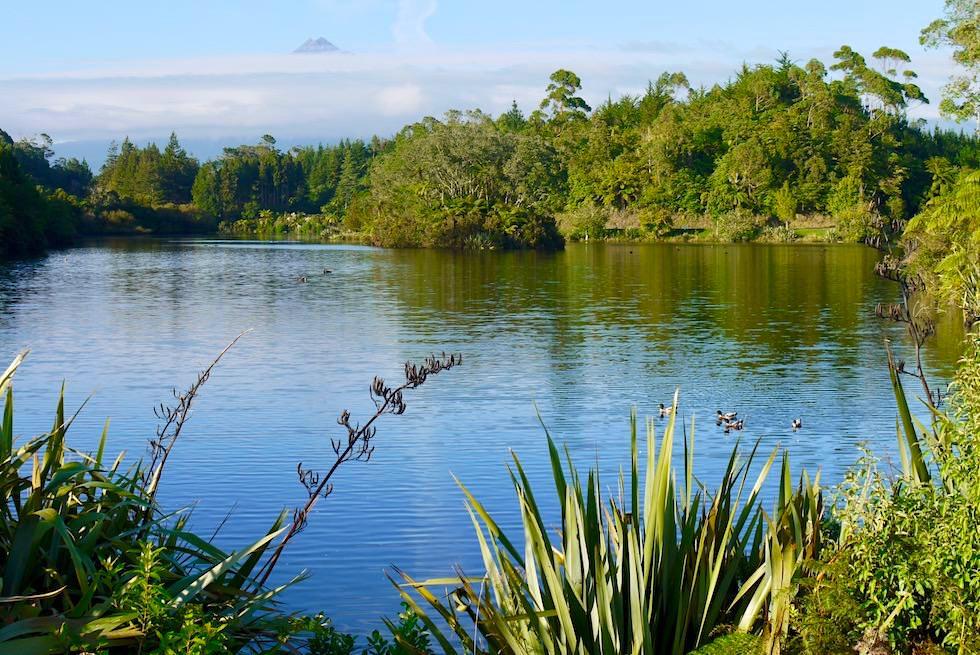 Lake Mangamahoe mit Bick auf Mt Taranaki - Egmont National Park - Nordinsel Neuseeland