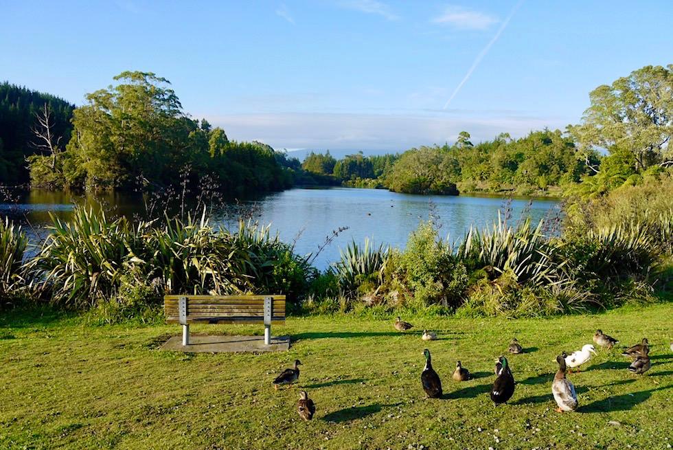 Wunderschöner Lake Mangamahoe beim Egmont National Park - Nordinsel Neuseeland