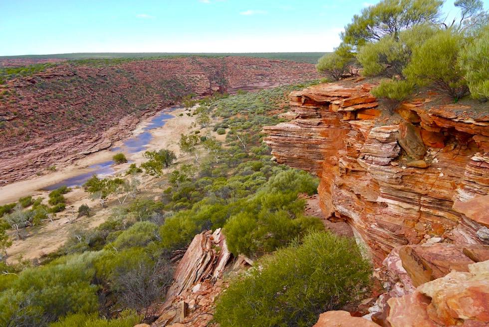 Ausblick auf den Murchison River & Schlucht vom Loop Lockout - Kalbarri National Park - Western Australia