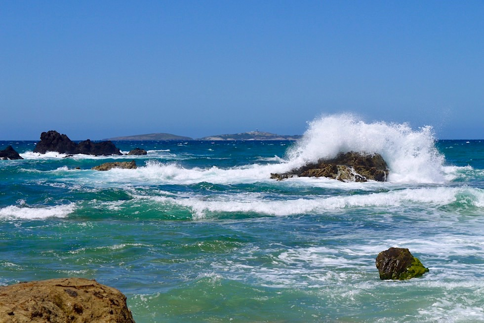 Blick auf Montague Island vom Surf Beach bei Narooma - New South Wales