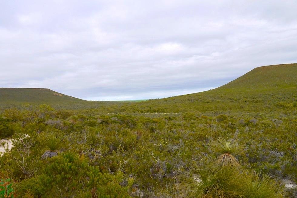 Blick auf Mt Lesueur & Mt Michaud im Lesueur National Park - Western Australia