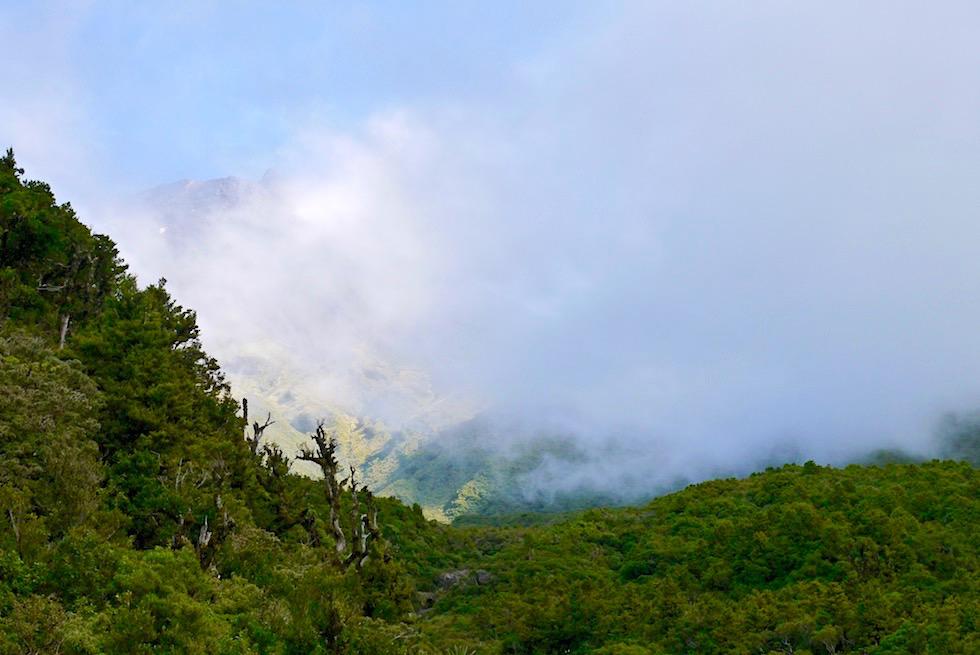 Mt Taranaki & Wilkies Pools - Ausblick vom Weg & Wolken Sonne Spiel: alles Wolken - Nordinsel Neuseeland