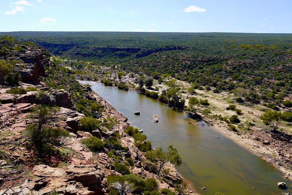 Blick flussabwärts: Murchison River - Hawk's Lookout - Kalbarri National Park - Western Australia