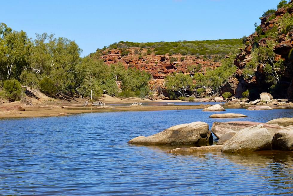 Eine Idylle lädt zum Schwimmen ein: Murchison River - Ross Graham Walk - Kalbarri National Park - Western Australia