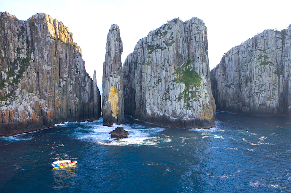 Pennicott Wilderness Journey - Tasman Island Cruise - Tasmanien