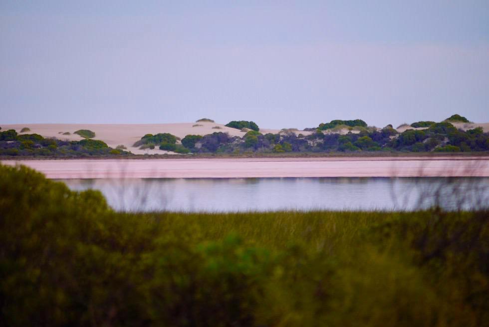 Hutt Lagoon wird wegen seiner Farben auch Pink Lake genannt - Western Austalia