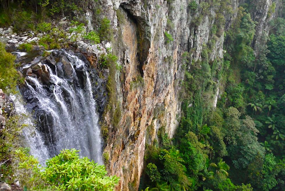 Atemberaubend schöne Purling Brook Falls - Springbrook Plateau im Springbrook National Park - Queensland