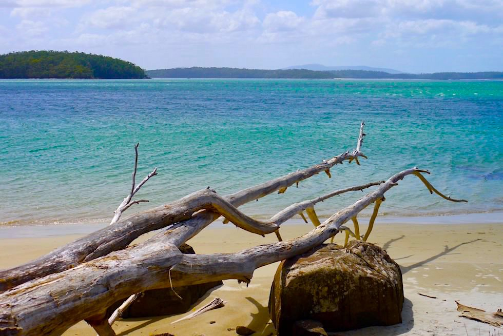 Ein zauberschönes Paradies am südlichen Ende von Australien - Recherche Bay & Cockle Creek - Tasmania
