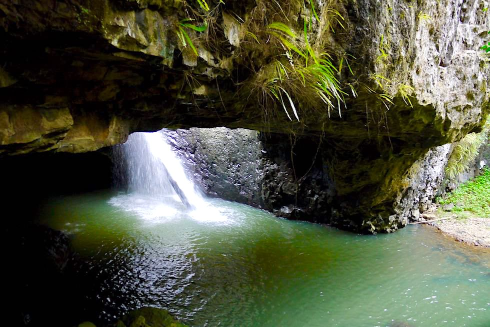 Regentag mit weniger Farben - Natural Bridge - Springbrook National Park - Queensland