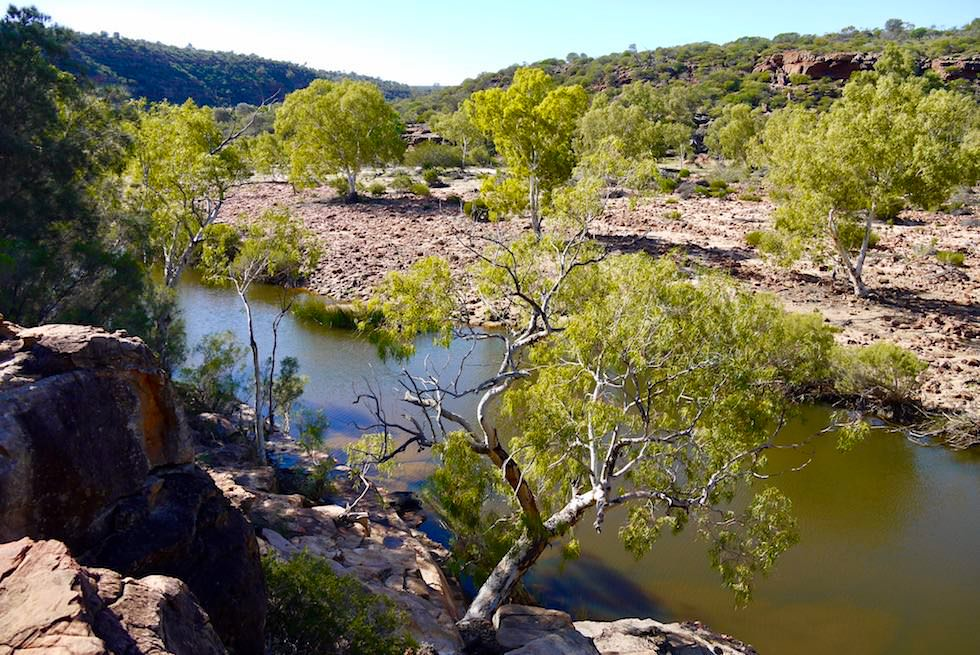 Ross Graham Walk zum Murchison River - Kalbarri National Park - Western Australia