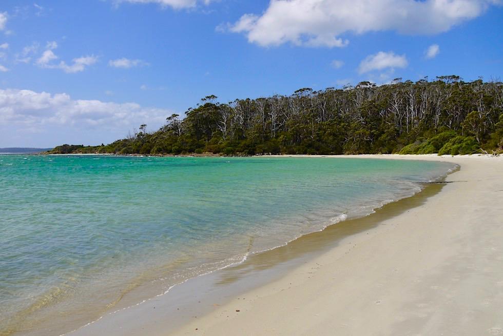 Wunderschöne Strandabschnitte auf der Wanderung zum Fisher's Point - Cockle Creek - Tasmania