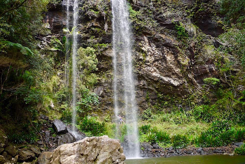 Blick auf die herrlichen Twin Falls - Springbrook Plateau im Springbrook National Park - Queensland