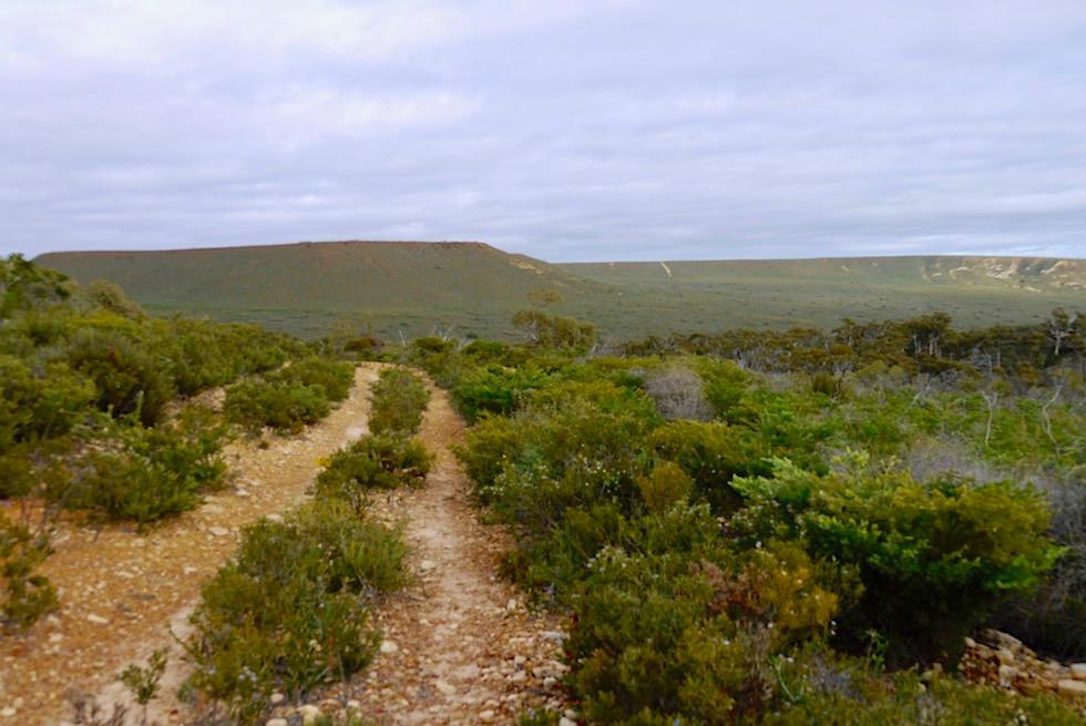 Wanderweg zum Mt Lesueur - Western Australia