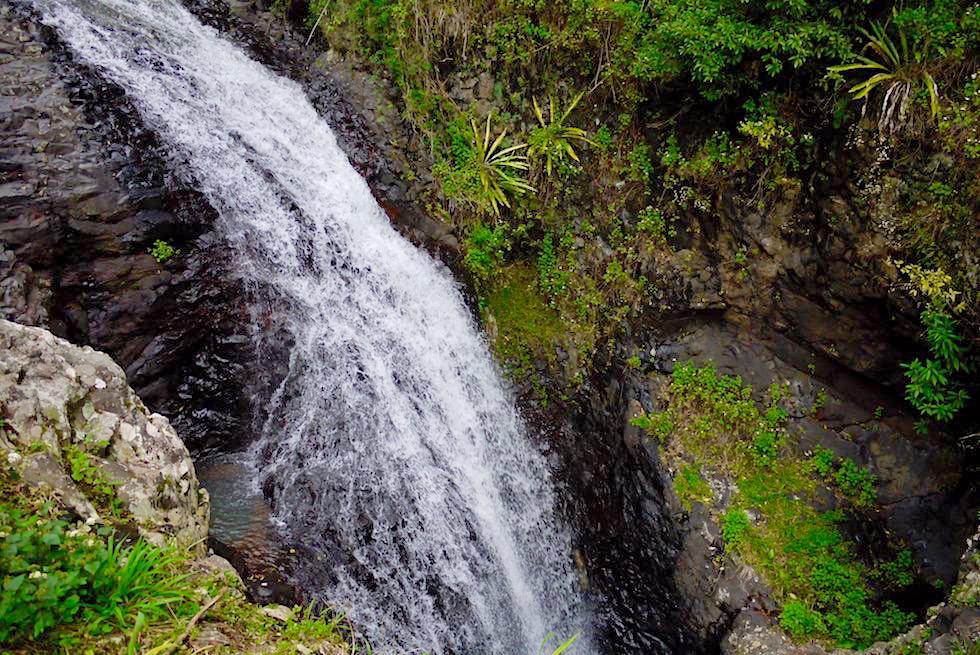 Wasserfall bei Natural Bridge - Springbrook National Park - Queensland