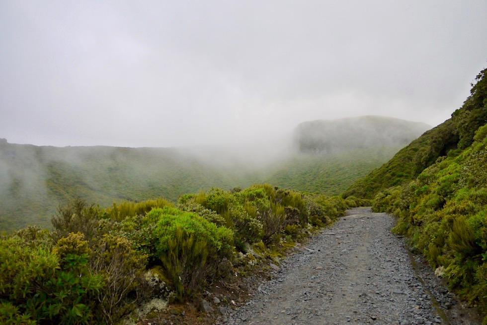 Ziehweg & Summit Track - Mt Taranaki Wanderung zum Gipfel - Nordinsel Neuseeland