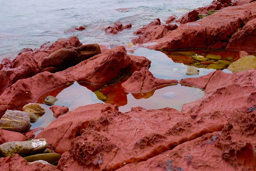 Ben Boyd National Park - Barmouth Beach & rote Felsen - New South Wales