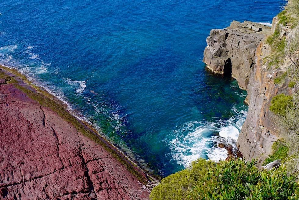 Ben Boyd National Park - Farbexplosion & Natur von ihrer schönsten Seite: Pulpit Point Lookout - Saphire Coast - New South Wales
