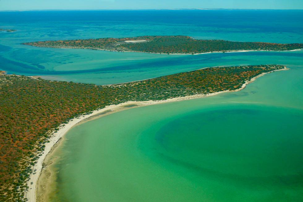 Zauberschöne Big Lagoon aus der Vogelperspektive - Shark Bay - Francois Peron National Park - Western Australia