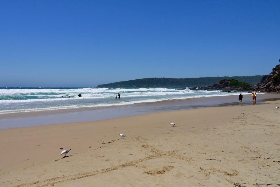 Pambula Beach: wunderschöne, einsame Strände - Sapphire Coast - New South Wales