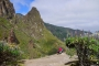 Roque Grande Wanderung – Blauer Natternkopfwald & die schönsten Wildblumen von Valsequillo