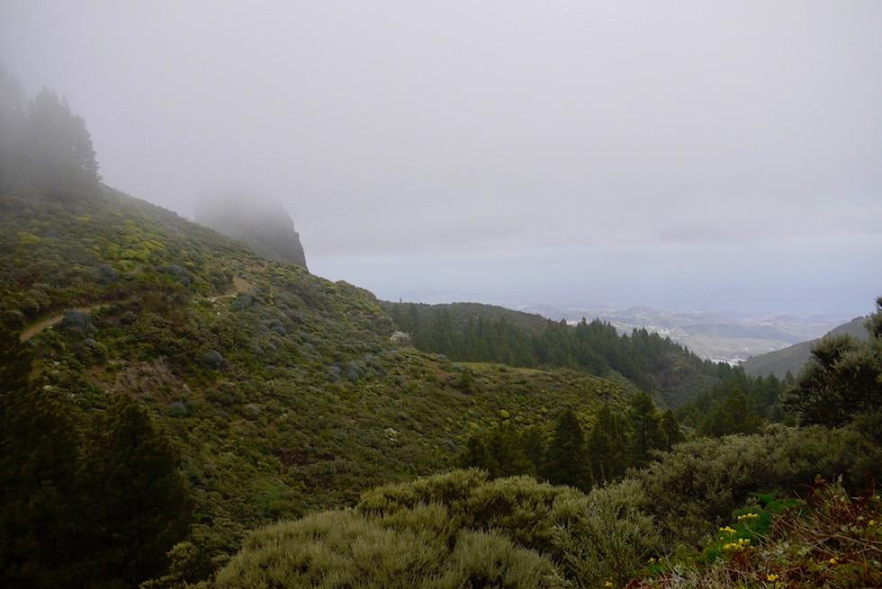 Roque Grande Wanderung - Nebel lichtet sich leicht - Valsequillo - Gran Canaria